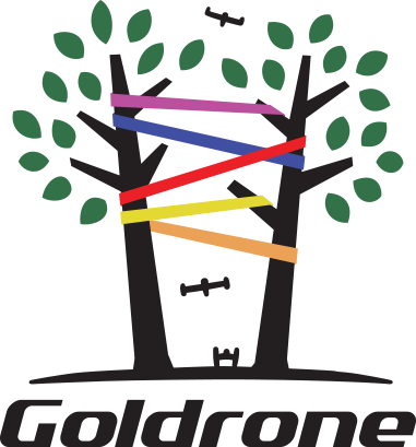 https://goldrone.fr/wp-content/uploads/2018/04/logo_goldrone_valid4_COLOR.png