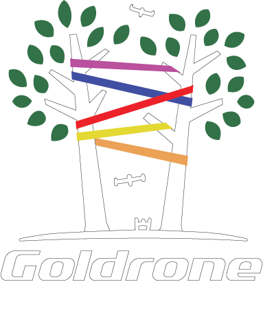 https://goldrone.fr/wp-content/uploads/2018/04/logo_goldrone_valid4_COLOR_White.png